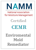 Enviromental Mold Remediator