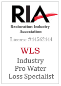 Industry Pro Water Damage Specialist