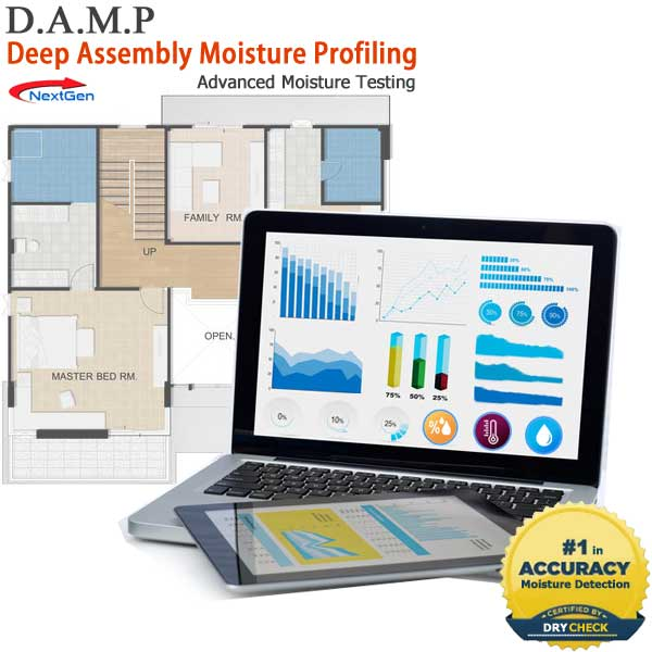 DAMP Home Moisture Testing to Prevent Mold