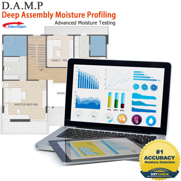 DAMP Moisture Testing to Prevent Mold