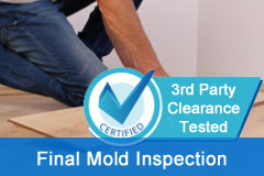Final Mold Inspection Clearance Test