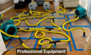 Professional Restortion Equipment Tampa