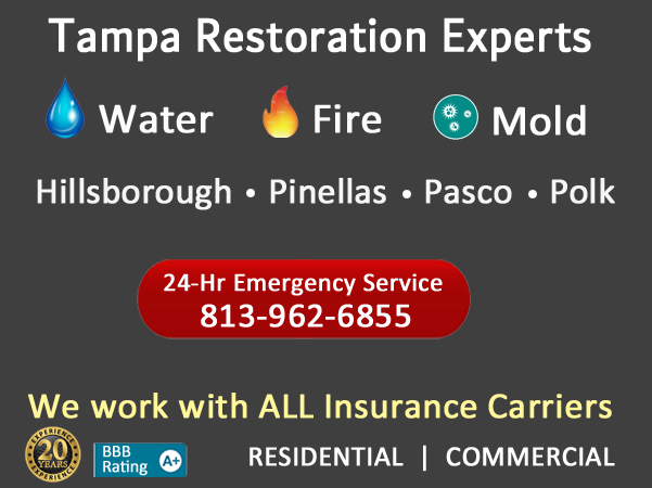 Water Fire Mold Restoration Services Tampa