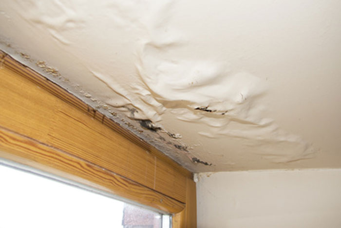 Top 5 Ways To Know If You Have Water Damage And Your