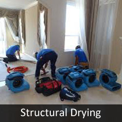Structural Drying to Prevent Mold
