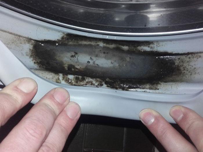Washing Machine Mold