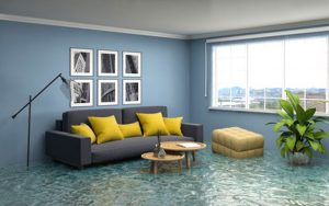 Water Damage Mitigation